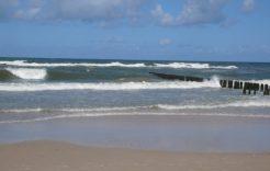 Więcej o: Sinice na plażach Bałtyku, jednak nie w Dziwnówku.