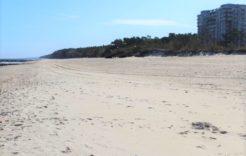 Więcej o: Nowa plaża – ewenement w Polsce